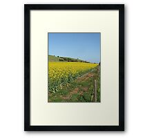 Yellow Field of Sunshine Framed Print