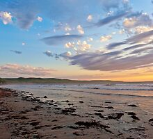 Silver Sands Beach (Facing South) by sedge808