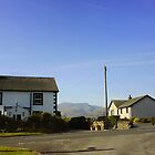 Lake District, Cumbria (1) by holden