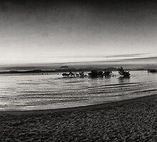 Port Douglas Beach and Sugar Wharf  by Korske Ara