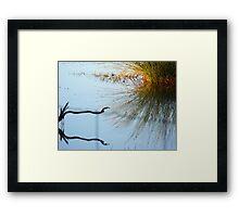 17/365 recognition Framed Print