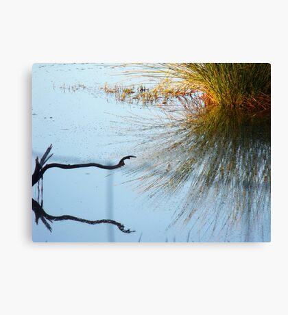 17/365 recognition Canvas Print