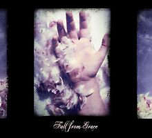 Fall from Grace by Sybille Sterk