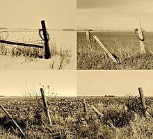 Seasons of the Fence BW by tsarts