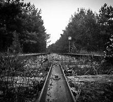 lost railroad by Gary Busch