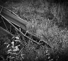 lost conveyor belt by Gary Busch