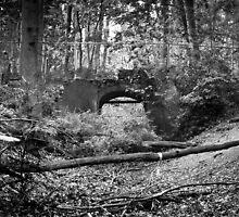 lost bridge by Gary Busch