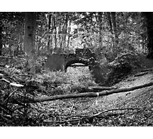 lost bridge Photographic Print