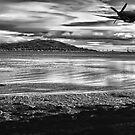 spitfire over the beauly firth by clayton  jordan