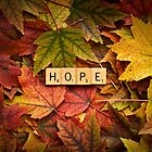 HOPE-Autumn by onyonet photo studios