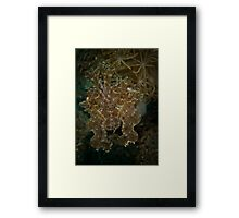 Really saying something!!! Framed Print