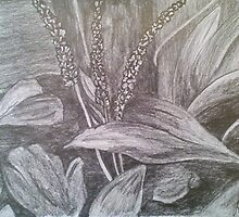 Plant Study II by Lorelle Gromus