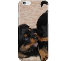 Rottweiler Puppies Playing iPhone Case/Skin