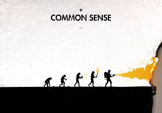 99 Steps of Progress - Common sense by maentis