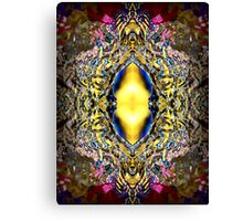 The Water Portal Canvas Print