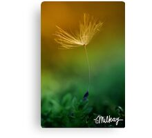Once Upon a Wish Canvas Print