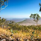 Five Rivers Lookout by David Haworth