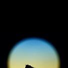 Silhouett-O (Vertical) by milkayphoto