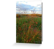 Grass is Grand Greeting Card