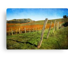Napa Valley in Autumn Canvas Print