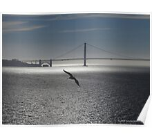 Tranquil Golden Gate Poster