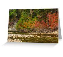 Nason Creek, Chelan County, Washington Greeting Card