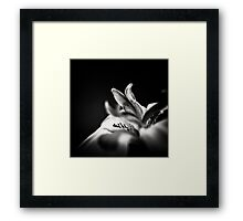 Flowerscapes - BW Fairy Iris Framed Print