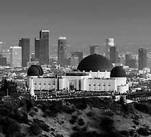 Los Angeles by Radek Hofman