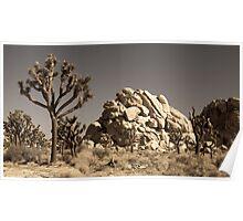Dramatic Mojave Desert Panorama Poster