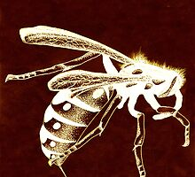 Wasp by Cameron Bullen