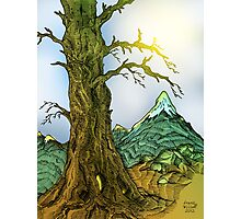 Tree and Mountain Pen Drawing Photographic Print
