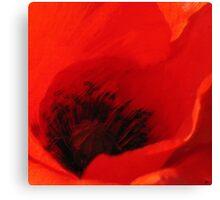 Dan ART BREEZE Red Poppy Flower Canvas Print
