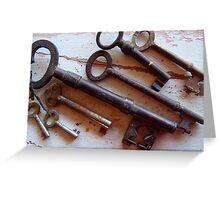 18/365  keys Greeting Card