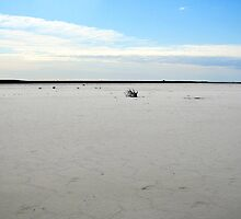 Lake Eyre by gillsart