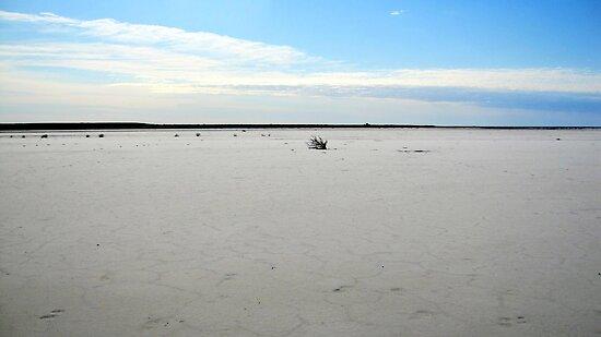 Lake Eyre by gillsart