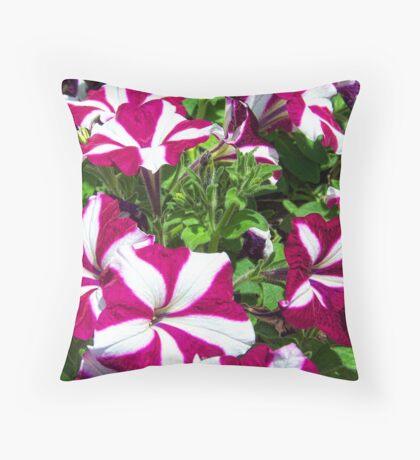 Candy Striped Petunias Throw Pillow