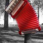The Red Verdi V hangs by Diane  Kramer