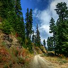 The High Road by Charles &amp; Patricia   Harkins ~ Picture Oregon