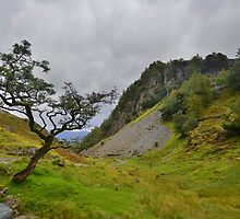The Lake District: Castle Crag by Rob Parsons