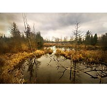 Elora-Cataract Trail Photographic Print