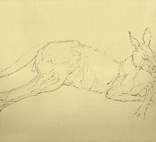Kangaroo by Cameron Hampton