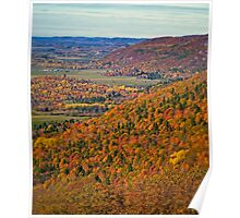 Canopy of Orange Leaves in the Ottawa Valley Poster