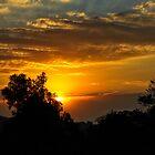 """Golden blue Morning"" by Andreas Koerner"