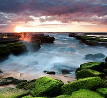 Turimetta Colour by CSchulstad