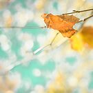 Gold autumn leafs on a blue retro magic sky  by Andreka