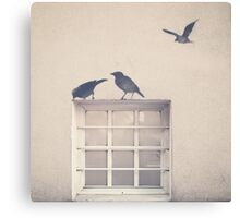 Painted bird over a window in a beige wall Canvas Print