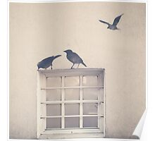 Painted bird over a window in a beige wall Poster