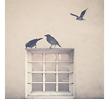 Painted bird over a window in a beige wall Photographic Print