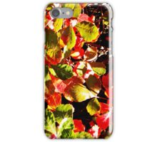Painted Leaves iPhone Case/Skin