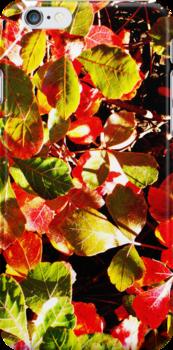 Painted Leaves by SRowe Art